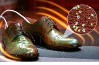 Schuhtrockner kaufen: Wissenswertes, Infos & Kaufberatung